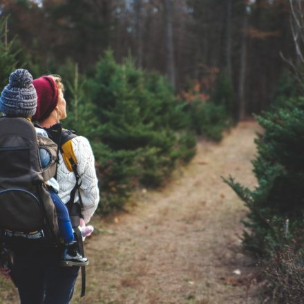 Meilleurs Porte-Bébés pour la Randonnée : Comparatif & Guide d'Achat